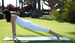 Plank Pose Private Yoga Santa Monica Brentwood Pacific Palisades
