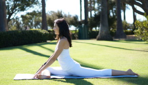 Five Safe Hip Openers Private Yoga Santa Monica Brentwood Pacific Palisades Bel Air Venice