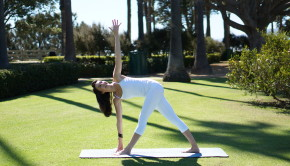 Private Yoga Santa Monica Los Angeles Brentwood Pacific Palisades Bel Air Venice Marina del Rey Summer Detox