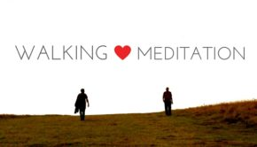 Walking Meditation Private Yoga Santa Monica Brentwood Pacific Palisades