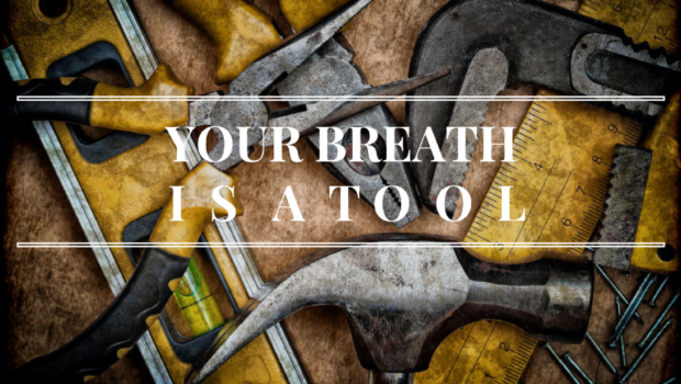 Your Breath is a Tool Private Yoga Santa Monica Brentwood Pacific Palisades Bel Air Venice