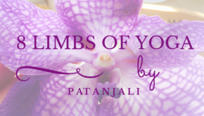 8 limbs of yoga private yoga santa monica brentwood pacific palisades bel air venice