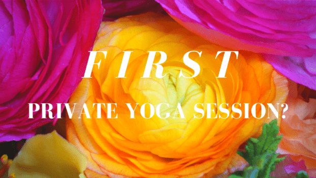 Private Yoga Santa Monica Brentwood Pacific Palisades Bel Air Venice Your First Private Yoga Session