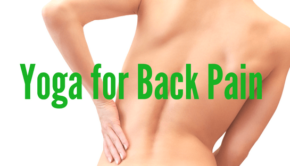 Private Yoga Instructor Santa Monica Los Angeles Yoga for Back Pain