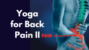 Yoga for Back Pain II Private Yoga Instructor Santa Monica Brentwood Los Angeles