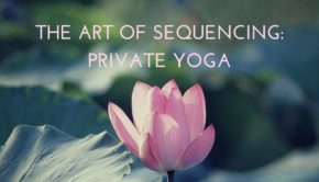 Private Yoga Instructor Santa Monica Los Angeles Sequencing a Private Yoga Sesssion