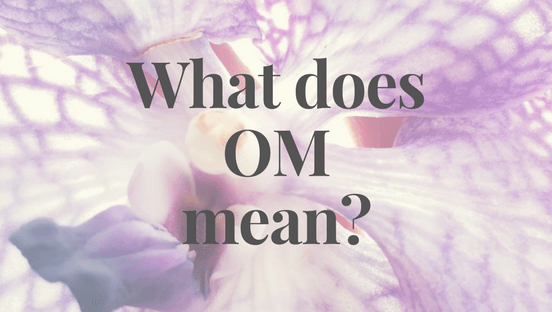 Private Yoga Instructor Los Angeles Santa Monica Brentwood Pacific Palisades Bel Air Venice Marina del Rey What Does Om Mean In Yoga