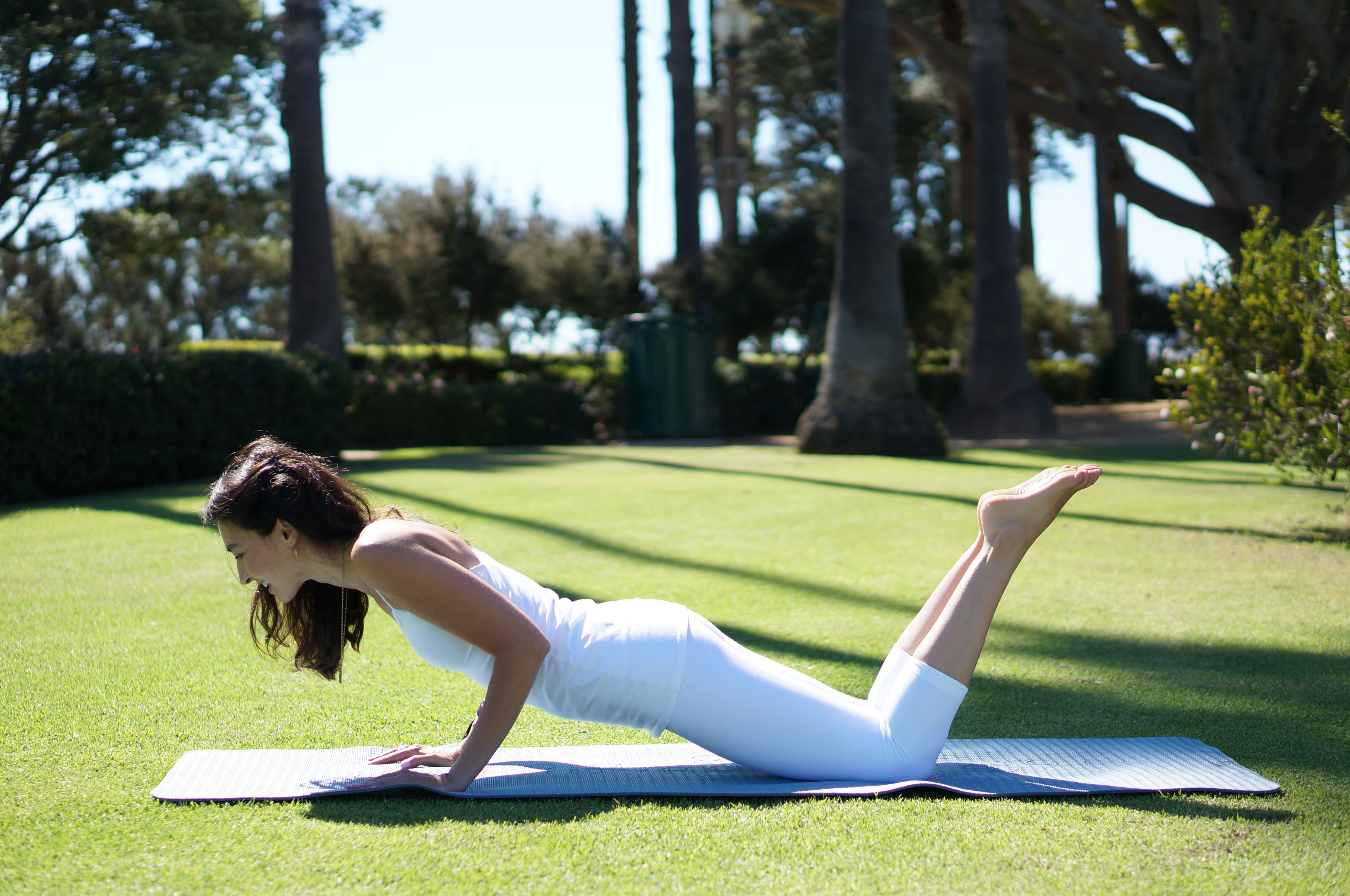Chaturanga Tutorial Private Yoga Instructor Santa Monica Los Angeles Brentwood Pacific Palisades Bel Air Venice Marina del Rey