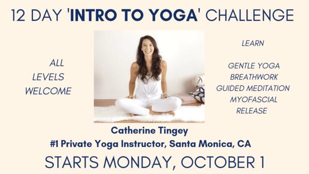 Private Yoga Instructor Los Angeles Santa Monica 12 Day Yoga Challenge