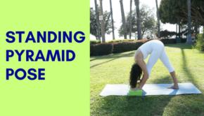 Private Yoga Instructor Los Angeles Santa Monica Standing Pyramid Pose
