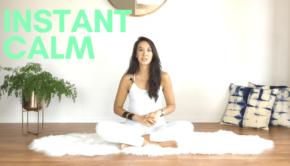 Private Yoga Instructor Los Angeles Santa Monica Instant Calm