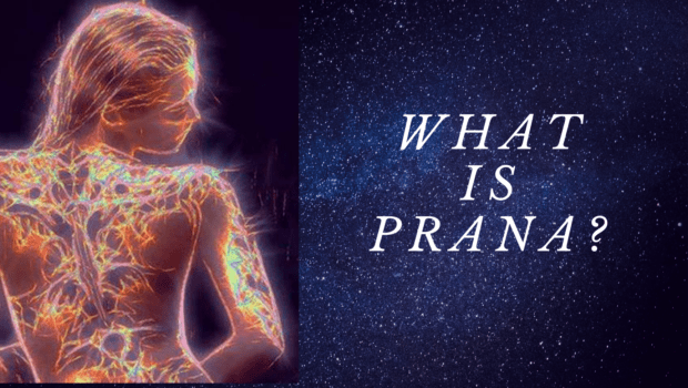 Private Yoga Instructor Santa Monica Los Angeles What is Prana