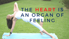 Private Yoga Instructor Santa Monica Los Angeles The Heart is an Organ of Feeling
