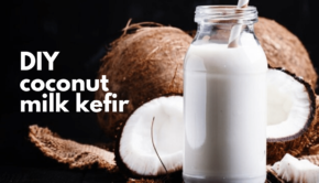 Private Yoga Instructor Santa Monica Los Angeles DIY Coconut Milk Kefir